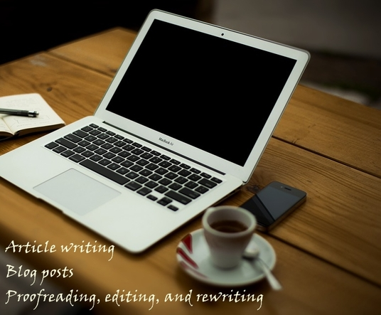 I will professionally write your articles and blog posts