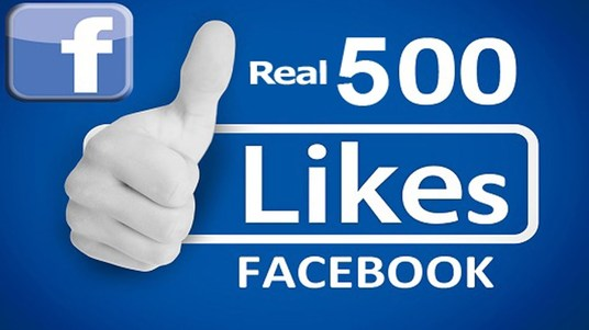 I will add 500+ Real Facebook Likes to your Page