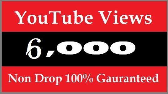 I will Get YouTube 6000 Views for your video