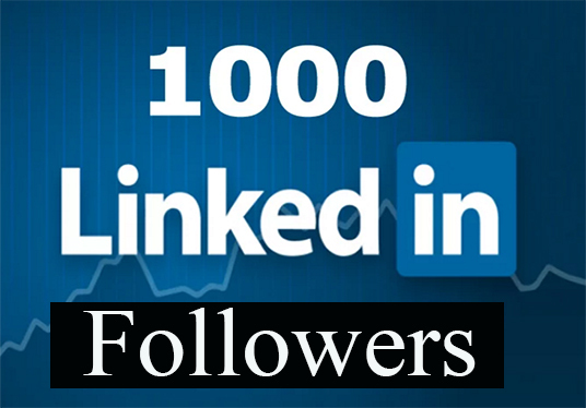I will provide 1000+ LinkedIn followers