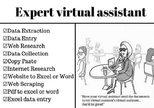 I will Be Your Expert Virtual Assistant