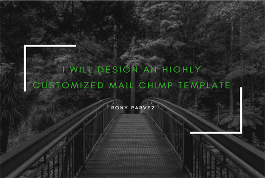 I will design a custom mail chimp template