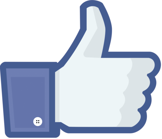 I will add 200 Real Facebook likes on Your Fanpage