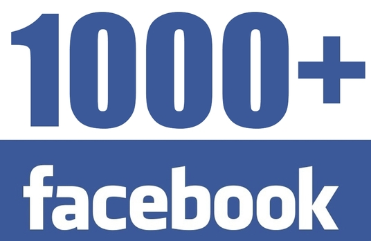 I will add 1000 real facebook likes on fanpage