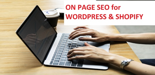I will do on-page optimization for WordPress & Shopify website