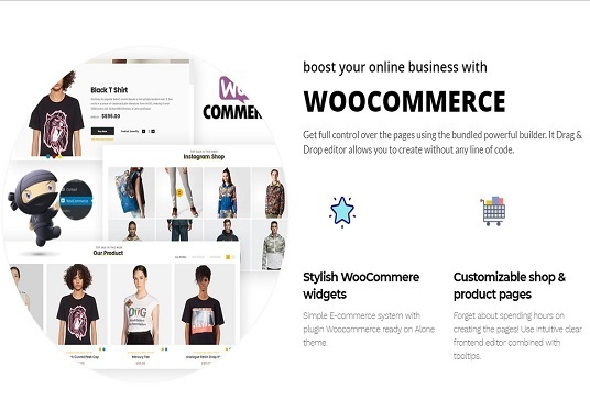 I will make a professional eCommerce website