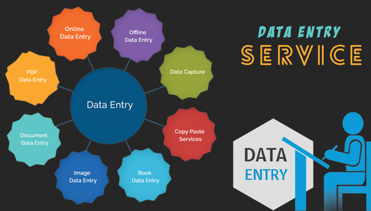 provide data entry service for your business