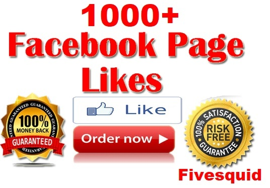 I will Add 1000+ Real Permanent  FACEBOOK Likes