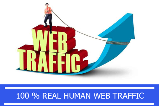 I will drive unlimited traffic to your website