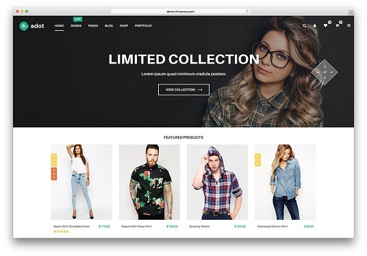 create a WordPress Website or e-commerce website using WordPress Premium Themes