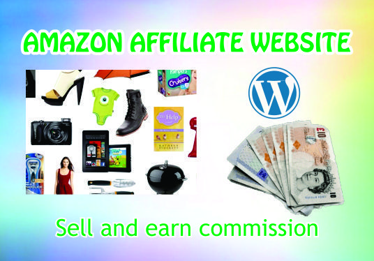 I will build an amazing  Amazon affiliate WordPress website