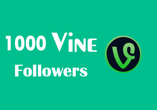 I will Provide 1,000 Guaranteed Vine Followers