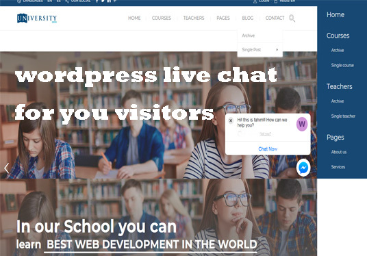 I will setup a Webchat or Support Chat on your WordPress website