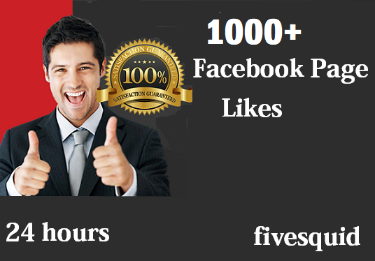 I will Give you 1000+ Instantly started Active Facebook Fan Page likes