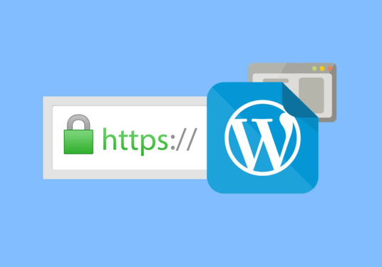 I will install and Setup SSL on your site