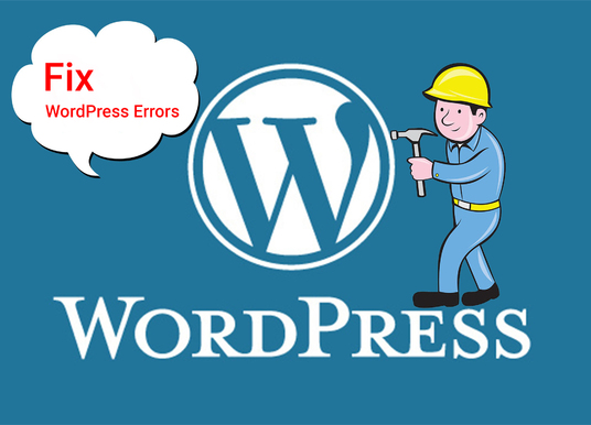 I will fix WordPress error, issue, problem and customize theme