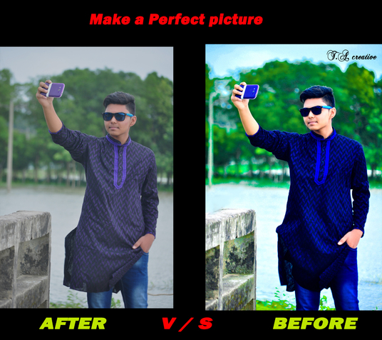 I will do A Perfect Picture For You