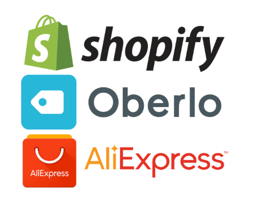 I will create a Professional Shopify  Dropshipping  Store for you