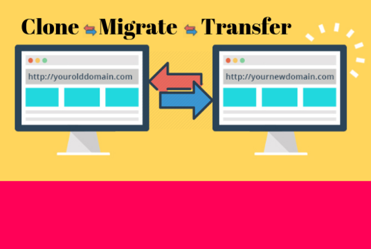 I will Migrate Wordpress Website In 24 Hours