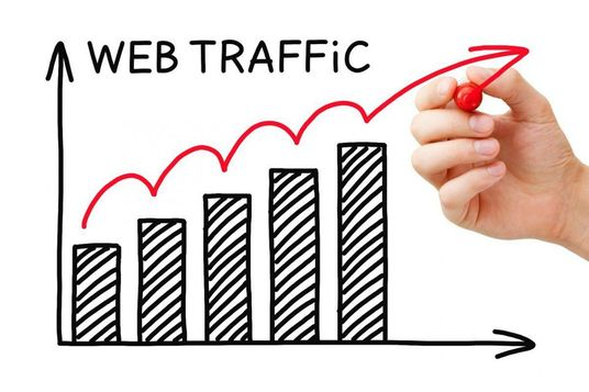 I will Send USA niche targeted Organic Traffic From Google