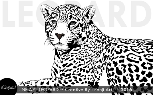 I will Make Beautiful Line Art Vector From Your Photos