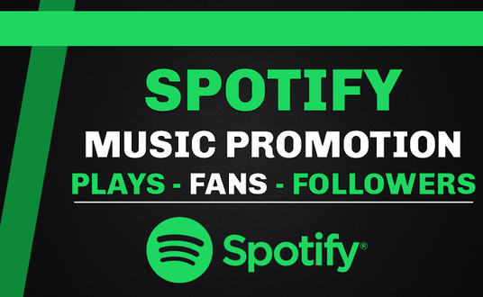 I will Do Viral Spotify Promotion And Album Promotion