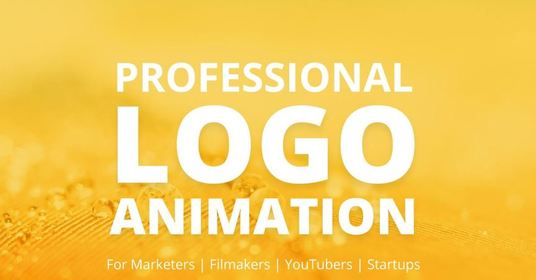 create a high quality, bespoke logo animation intro