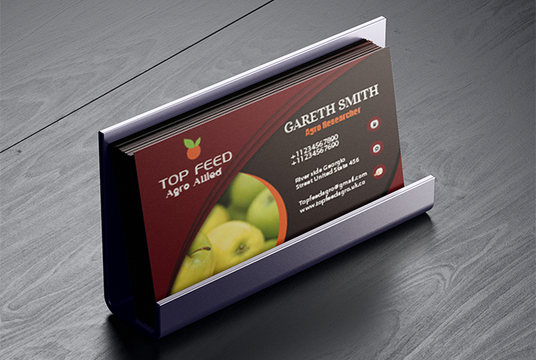 I will design  two sided custom BUSINESS card for your company