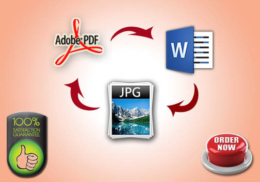 I will convert your PDF document into Ms Word or Word to PDF