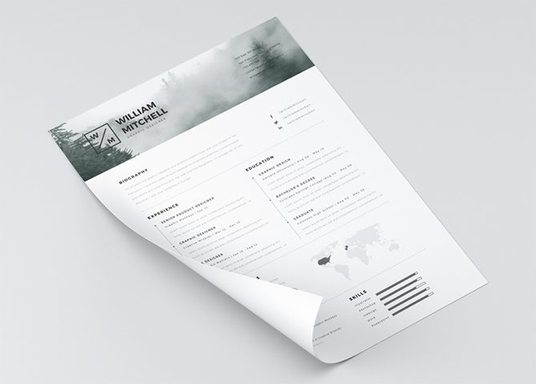 I will design your Resume/C.V. that will help you on your job search