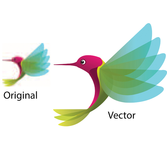 I will do Vector Tracing Within 24 Hours
