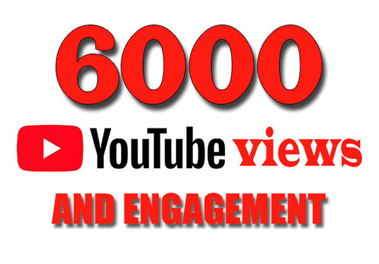 I will Provide 6000 YouTube Views And Engagement