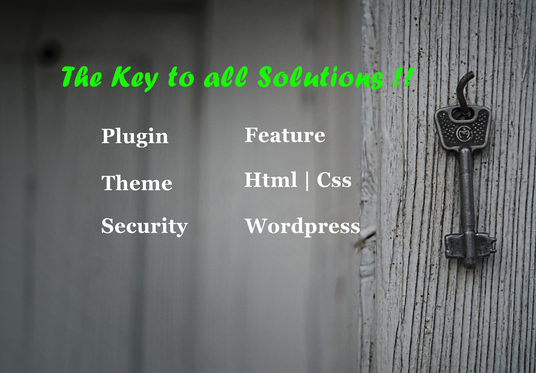 I will Fix Any Wordpress Website, Theme, Html, Css Issues or Errors