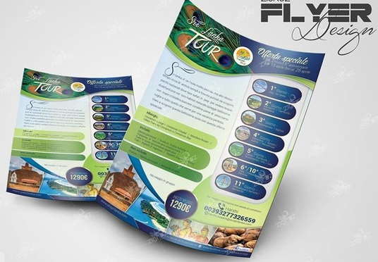design create a High Quality FLYER Design in one day