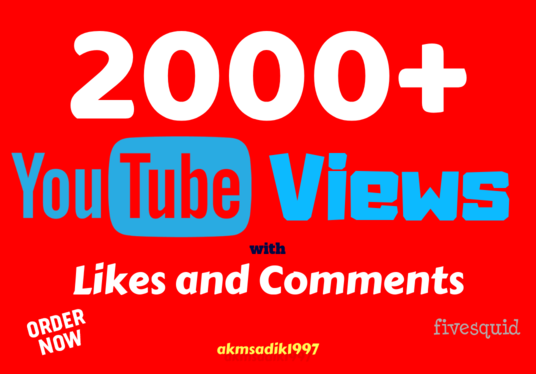 I will provide 2000+ Real YouTube Views along with Likes and Comments