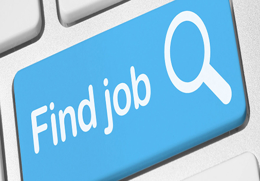 I will search and apply jobs for you