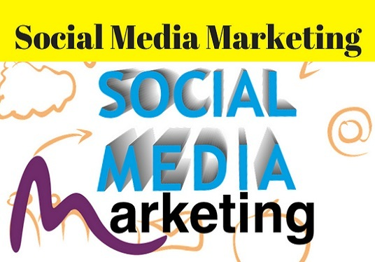 I will Do Any Social Madia Marketing