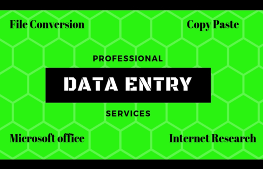 I will Do Perfect Data Entry and  Web Research