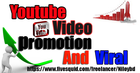 I will do viral You Tube video promotion for your video