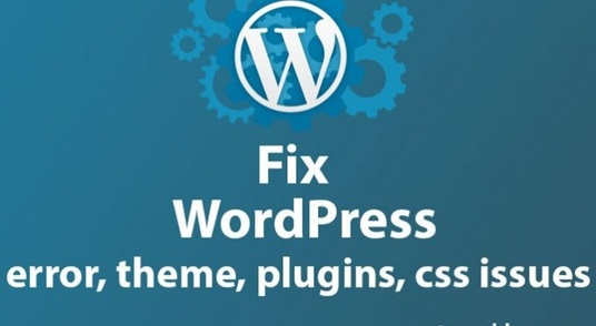 fix Your WordPress Errors or WordPress Issues