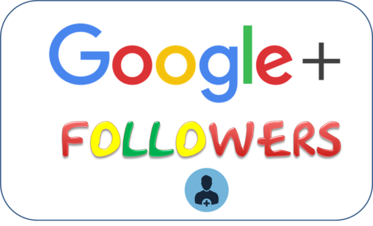 I will provide Google plus followers