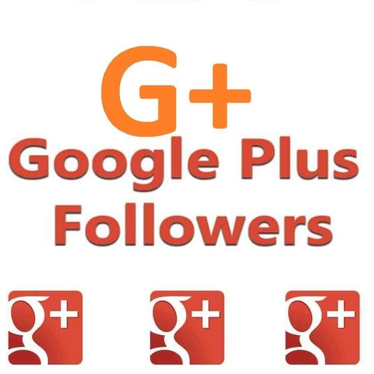 I will Send real Google plus followers