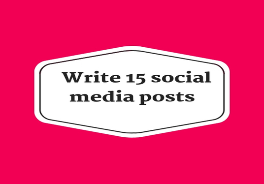I will Write 15  social media posts