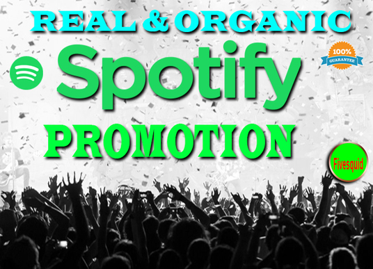I will Provide 2000 Spotify Music Plays