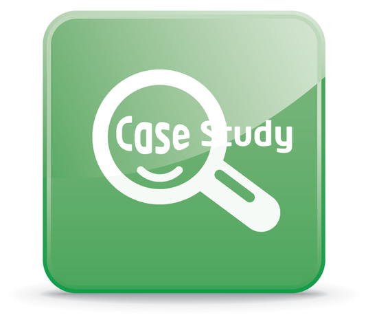I will create a case study to boost your business profile