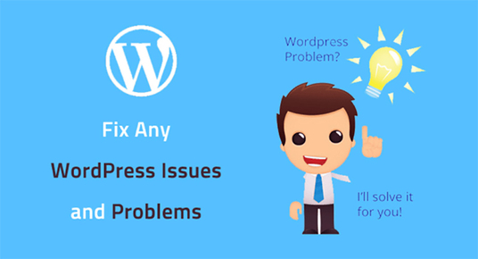 I will fix Wordpress problems you can't figure out how to fix