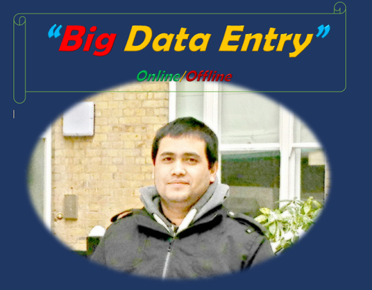 I will do big data entry