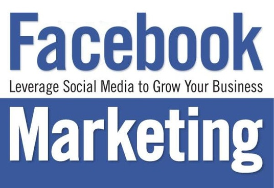 I will increase your facebook page followers
