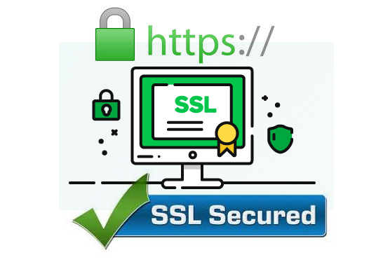 I will install premium SSL certificate lifetime for your business website