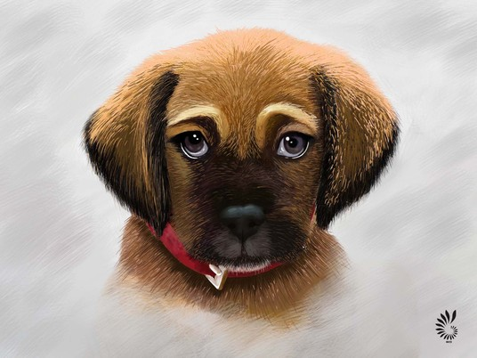 I will Draw Awesome Digital Realistic Portraits Of Your Pet